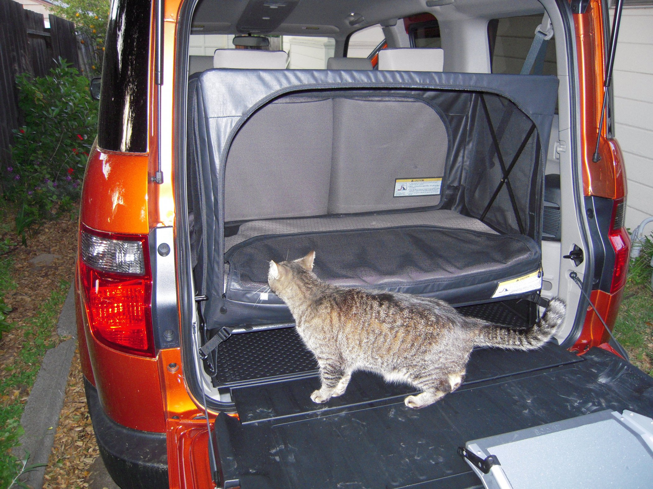 PHOTO (select to view enlarged photo) : honda element tailgate tent - memphite.com