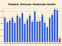 National Safety Council Statement on Preventing Pediatric Vehicular Heatstroke